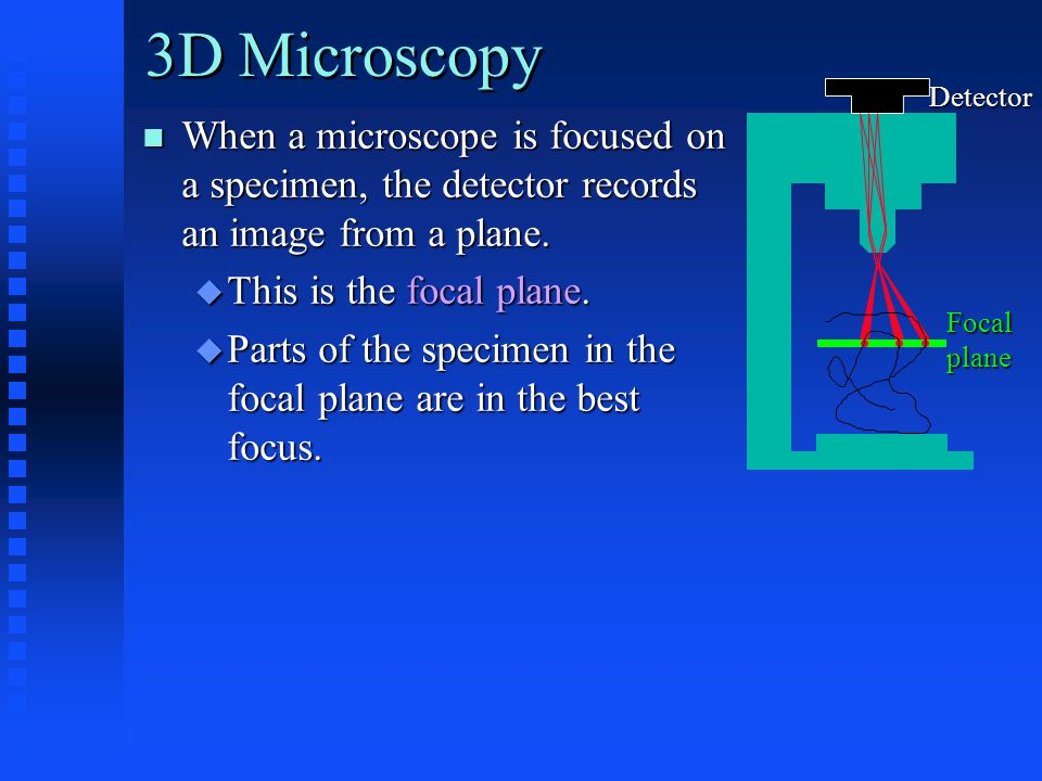 When a microscope is focused on a specimen, the detector records an image from a plane.