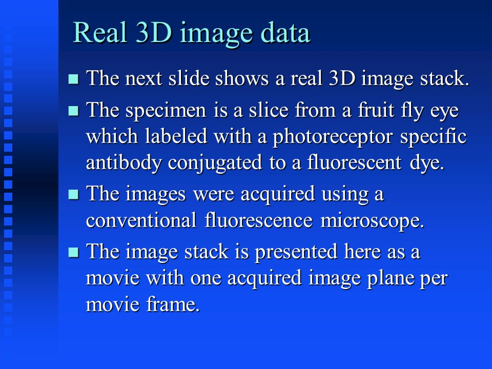The next slide shows a real 3D image stack. The next slide shows a real 3D image stack.