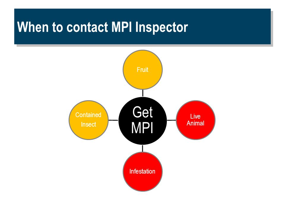 When to contact MPI Inspector Get MPI Fruit Contained Insect Infestation Live Animal