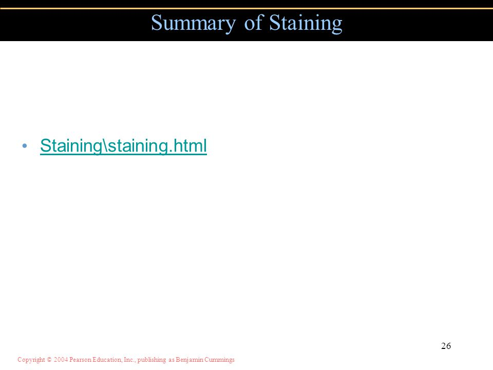 Copyright © 2004 Pearson Education, Inc., publishing as Benjamin Cummings Summary of Staining Staining\staining.html 26