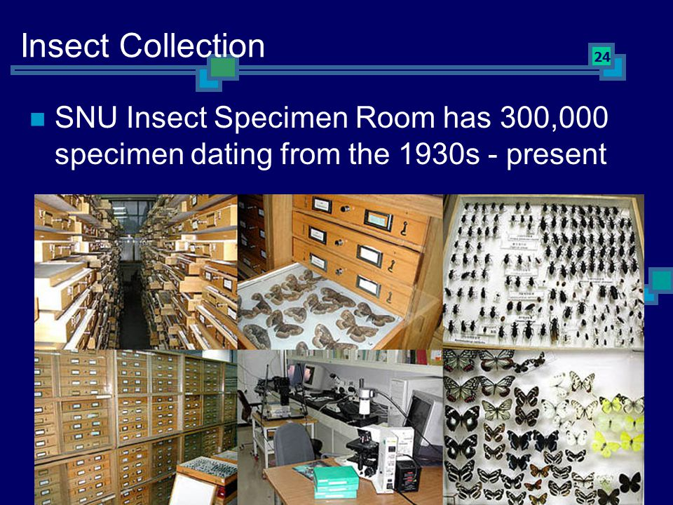 24 Insect Collection SNU Insect Specimen Room has 300,000 specimen dating from the 1930s - present