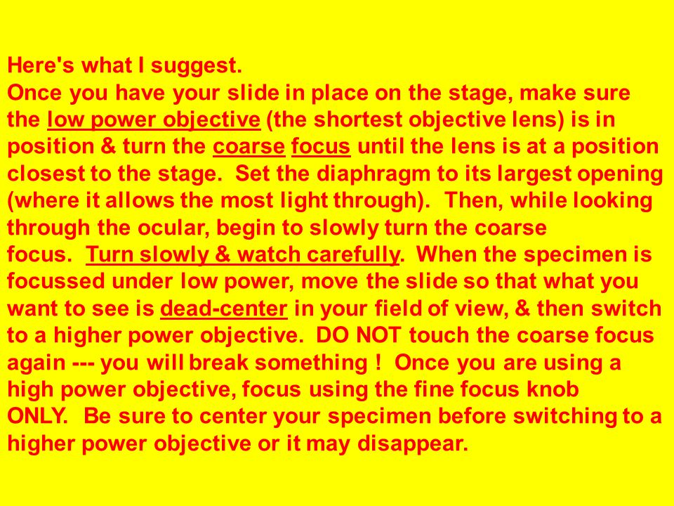 Here's what I suggest. Once you have your slide in place on the stage, make sure the low power objective (the shortest objective lens) is in position