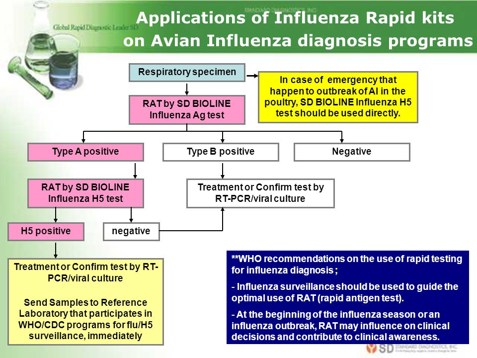 Applications of Influenza Rapid kits on Avian Influenza diagnosis programs Negative Respiratory specimen RAT by SD BIOLINE Influenza Ag test In case o