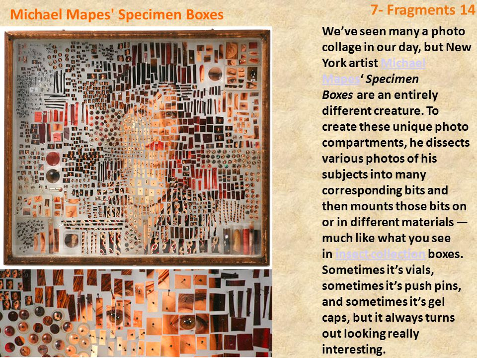 Michael Mapes Specimen Boxes 7- Fragments 14