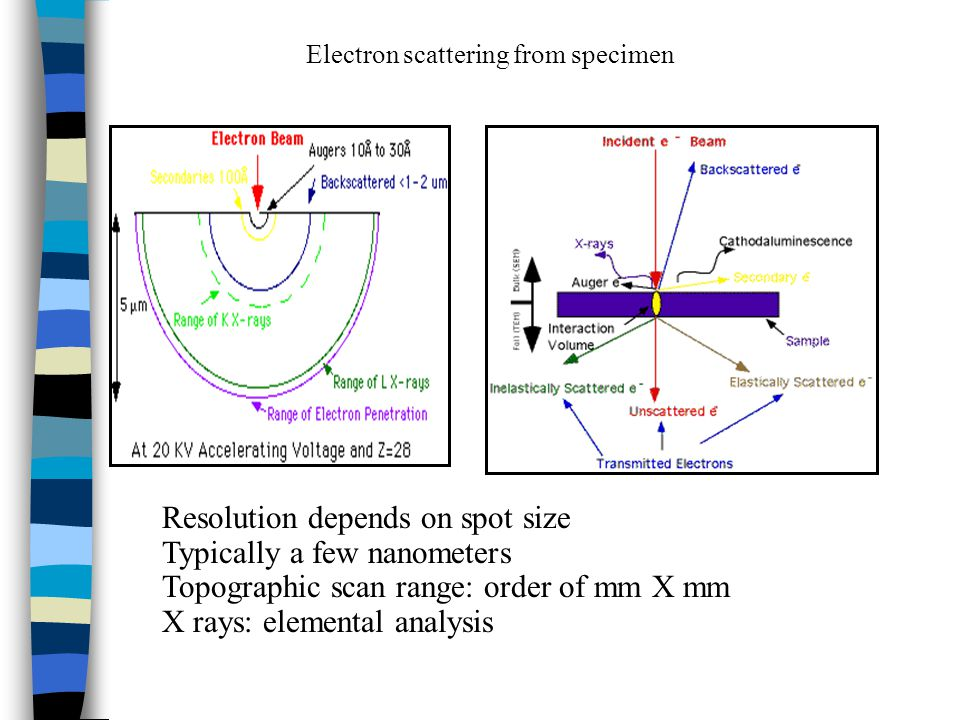 Electron scattering from specimen Resolution depends on spot size Typically a few nanometers Topographic scan range: order of mm X mm X rays: elemental analysis
