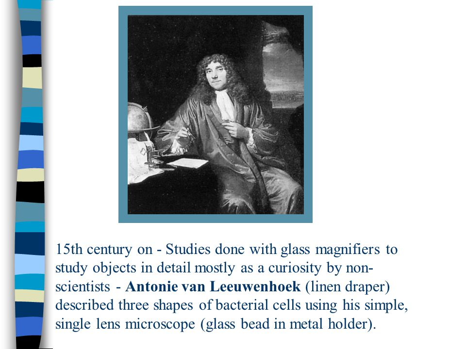 15th century on - Studies done with glass magnifiers to study objects in detail mostly as a curiosity by non- scientists - Antonie van Leeuwenhoek (linen draper) described three shapes of bacterial cells using his simple, single lens microscope (glass bead in metal holder).