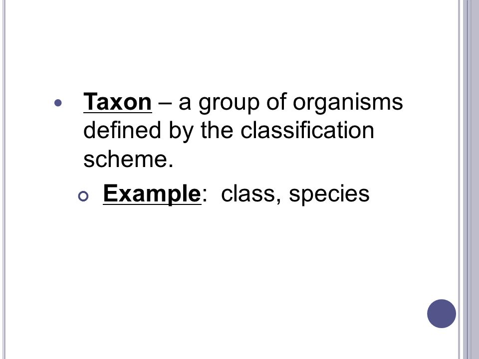Taxon – a group of organisms defined by the classification scheme. Example: class, species