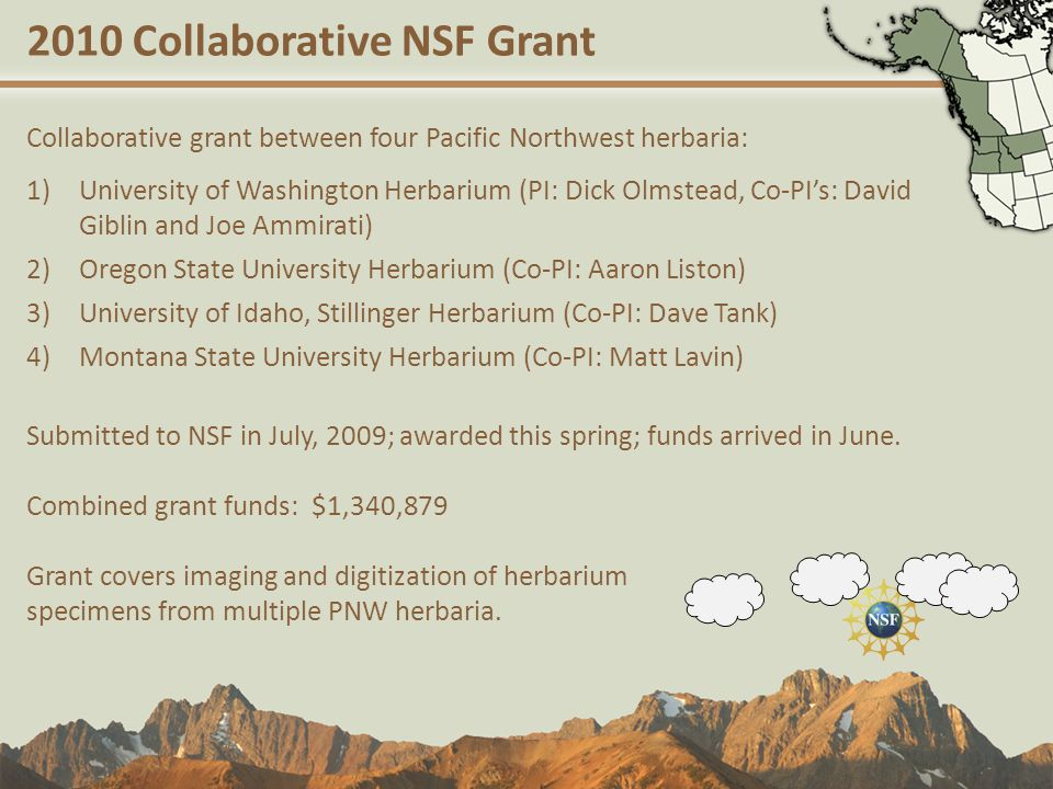 2010 Collaborative NSF Grant Collaborative grant between four Pacific Northwest herbaria: 1)University of Washington Herbarium (PI: Dick Olmstead, Co-PI's: David Giblin and Joe Ammirati) 2)Oregon State University Herbarium (Co-PI: Aaron Liston) 3)University of Idaho, Stillinger Herbarium (Co-PI: Dave Tank) 4)Montana State University Herbarium (Co-PI: Matt Lavin) Submitted to NSF in July, 2009; awarded this spring; funds arrived in June.