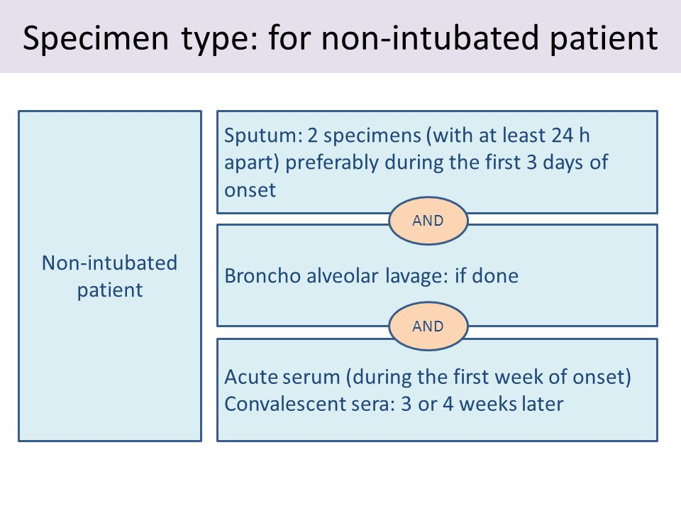 Specimen type: for non-intubated patient Non-intubated patient Sputum: 2 specimens (with at least 24 h apart) preferably during the first 3 days of onset Broncho alveolar lavage: if done Acute serum (during the first week of onset) Convalescent sera: 3 or 4 weeks later AND