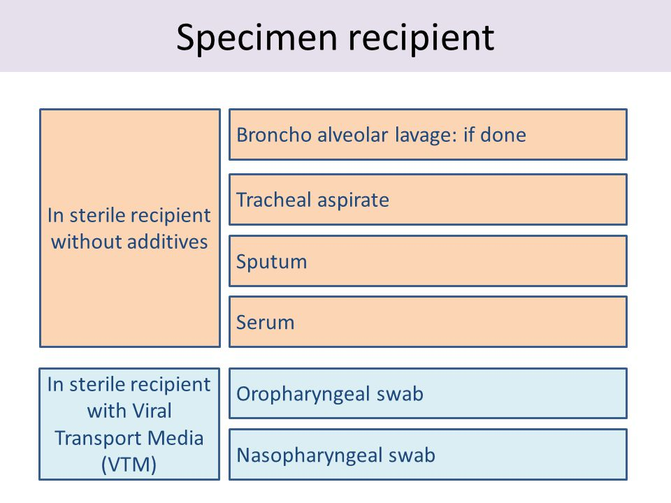 Specimen recipient In sterile recipient without additives Tracheal aspirate Broncho alveolar lavage: if done Serum In sterile recipient with Viral Transport Media (VTM) Oropharyngeal swab Sputum Nasopharyngeal swab