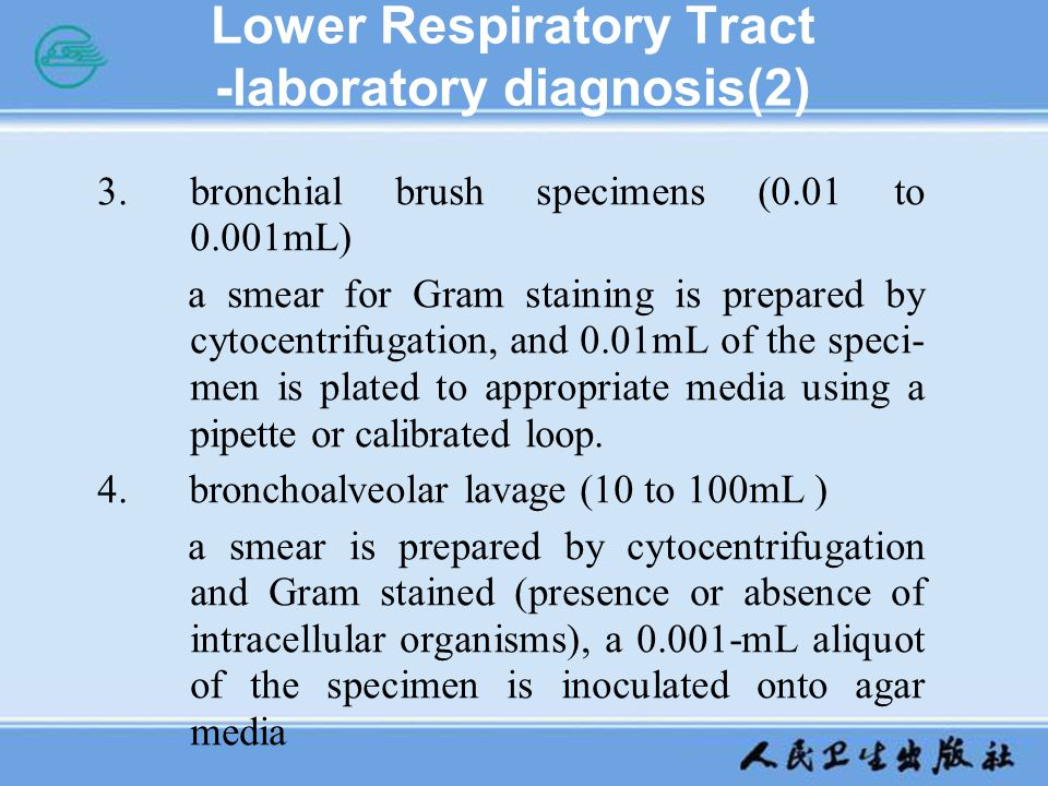 Lower Respiratory Tract -laboratory diagnosis(2) 3.bronchial brush specimens (0.01 to 0.001mL) a smear for Gram staining is prepared by cytocentrifuga