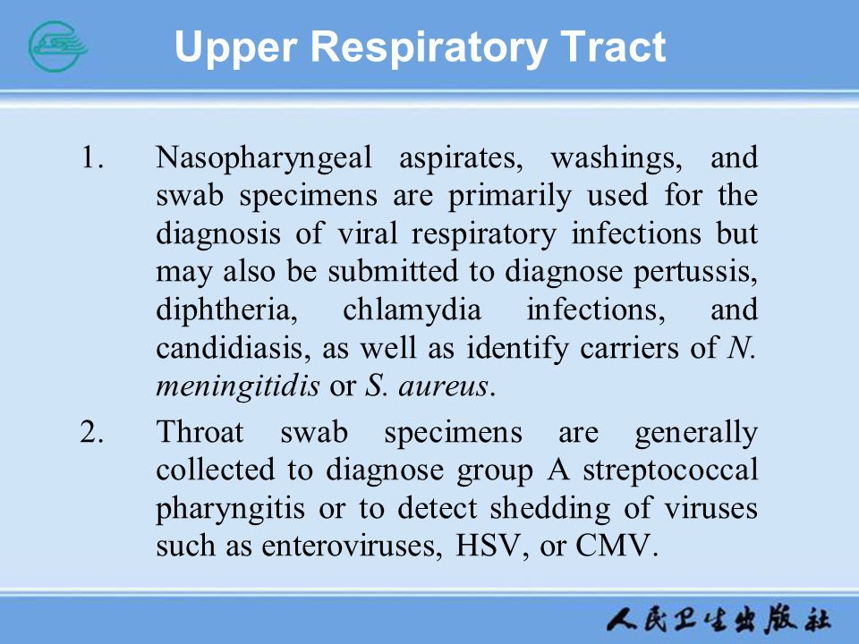 Upper Respiratory Tract 1.Nasopharyngeal aspirates, washings, and swab specimens are primarily used for the diagnosis of viral respiratory infections