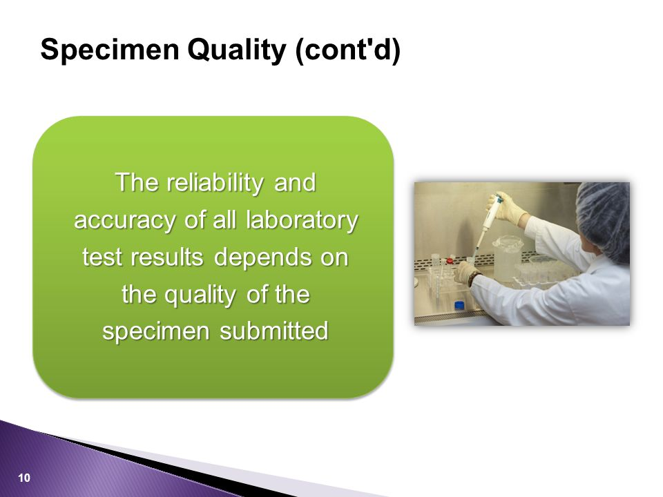 Specimen Quality (cont d) The reliability and accuracy of all laboratory test results depends on the quality of the specimen submitted 10