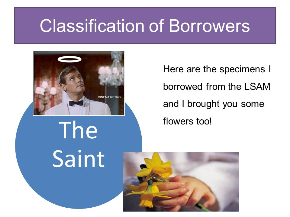 Classification of Borrowers The Saint Here are the specimens I borrowed from the LSAM and I brought you some flowers too!