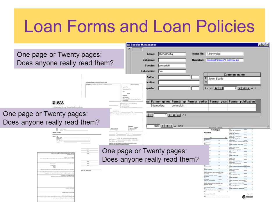 Loan Forms and Loan Policies One page or Twenty pages: Does anyone really read them.
