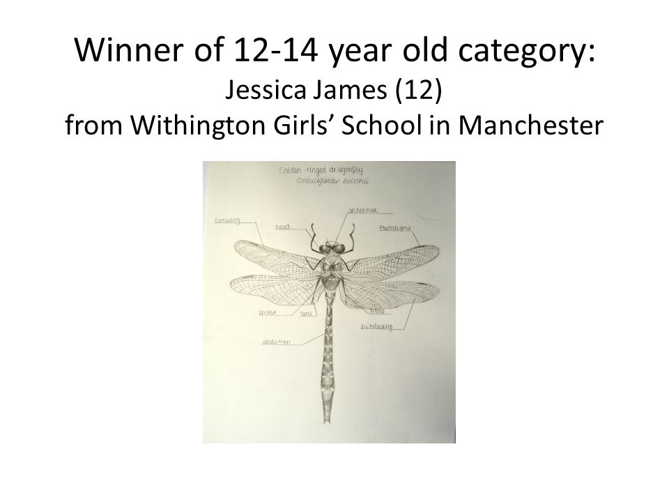 Winner of 12-14 year old category: Jessica James (12) from Withington Girls' School in Manchester