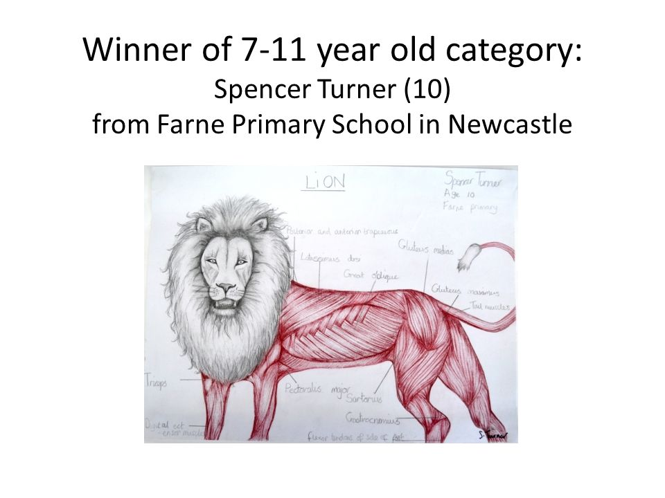 Winner of 7-11 year old category: Spencer Turner (10) from Farne Primary School in Newcastle