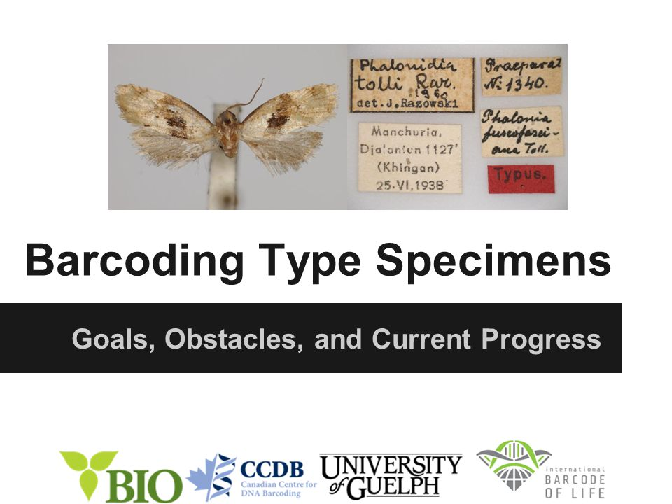 Barcoding Type Specimens Goals, Obstacles, and Current Progress