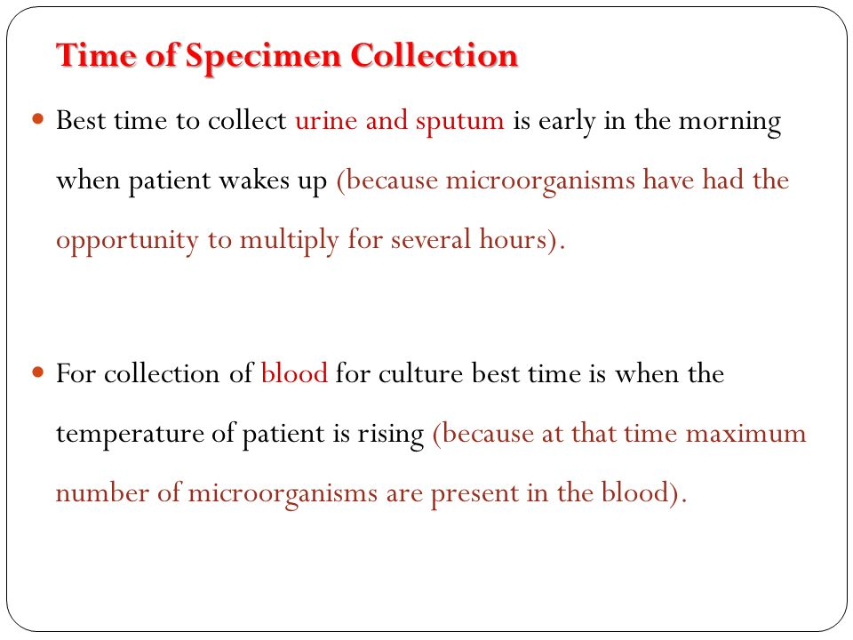 5.Eye Specimen Should be collected by an experienced person.
