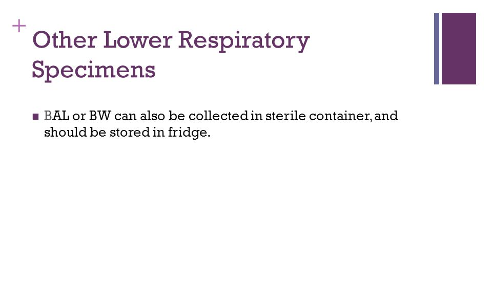+ Other Lower Respiratory Specimens BAL or BW can also be collected in sterile container, and should be stored in fridge.