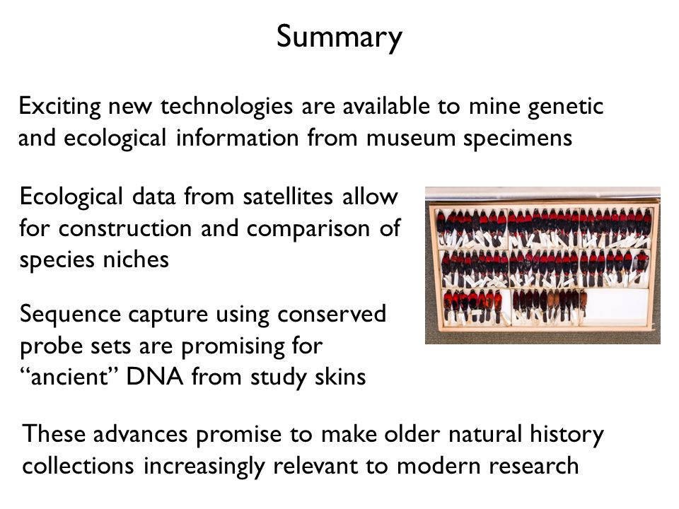 Summary Exciting new technologies are available to mine genetic and ecological information from museum specimens Sequence capture using conserved prob