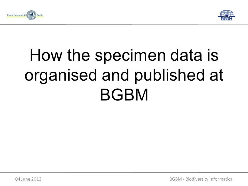 BGBM - Biodiversity Informatics04 June 2013 How the specimen data is organised and published at BGBM
