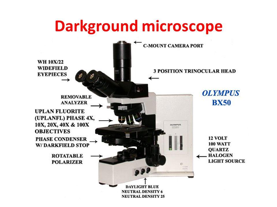 Darkground microscope