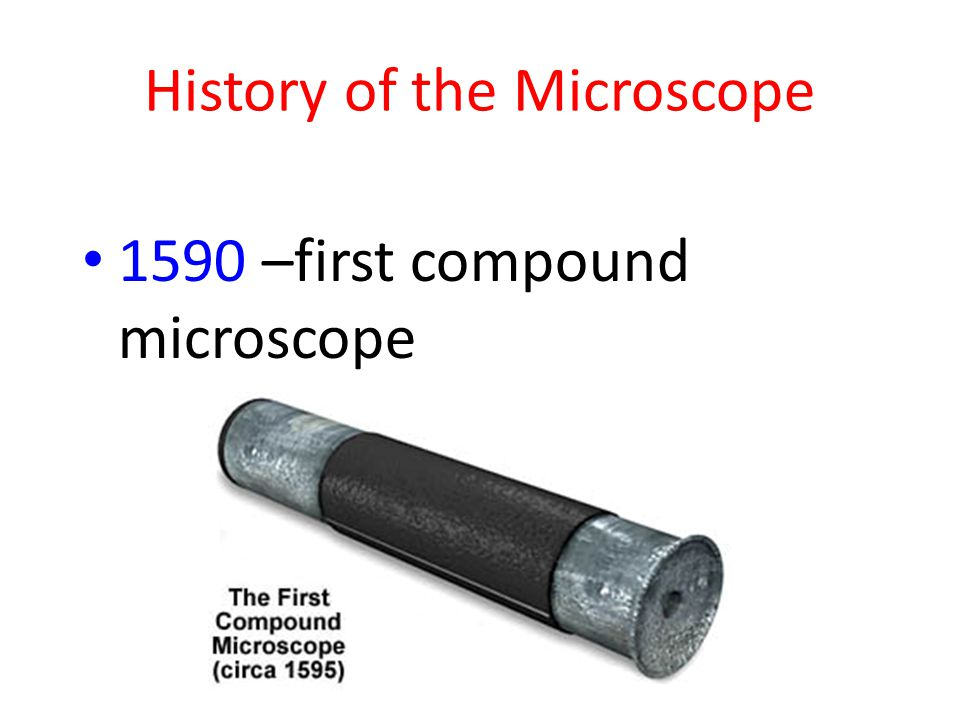 History of the Microscope 1590 –first compound microscope