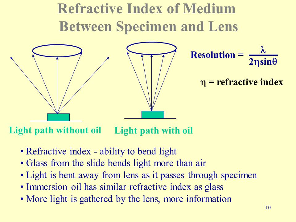 10 Refractive Index of Medium Between Specimen and Lens Light path without oil Light path with oil Refractive index - ability to bend light Glass from the slide bends light more than air Light is bent away from lens as it passes through specimen Immersion oil has similar refractive index as glass More light is gathered by the lens, more information 2  sin  Resolution =  = refractive index