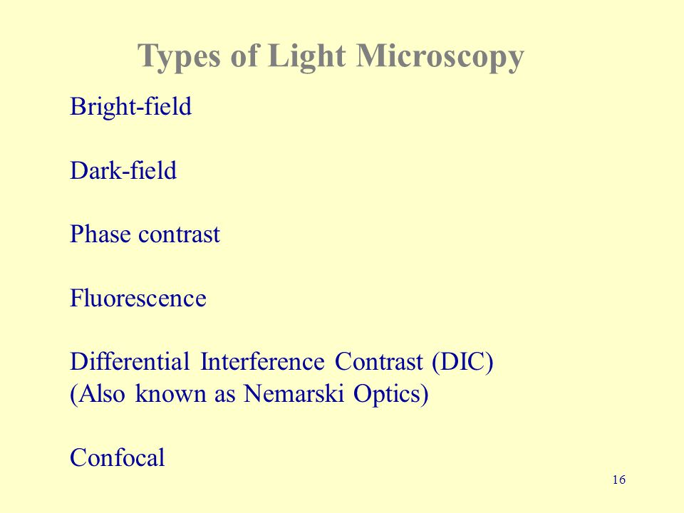 16 Types of Light Microscopy Bright-field Dark-field Phase contrast Fluorescence Differential Interference Contrast (DIC) (Also known as Nemarski Optics) Confocal