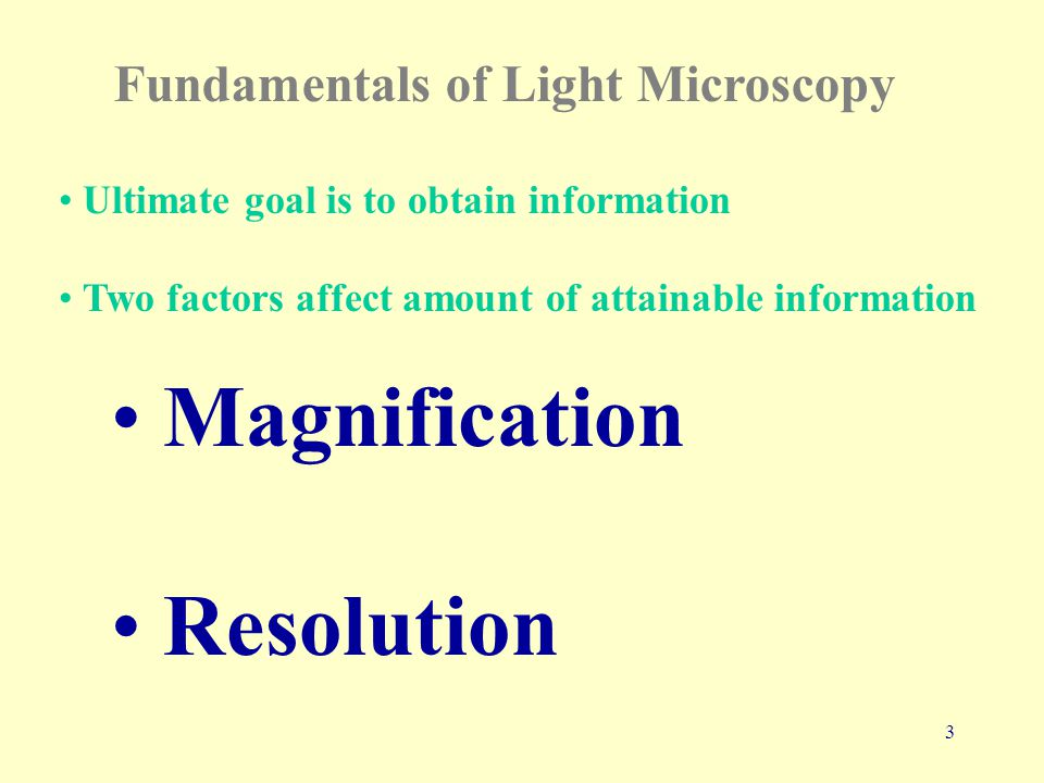 24 Electron Microscopy page 76 of electrons smaller than photons Uses electron beam instead of light Uses magnets to focus instead of lenses This results in better resolution –0.5 nm Magnification –100,000 to 1,000,000 X
