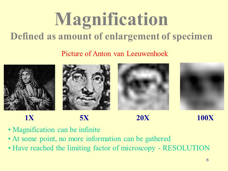 6 Magnification Defined as amount of enlargement of specimen 1X 5X 20X 100X Magnification can be infinite At some point, no more information can be gathered Have reached the limiting factor of microscopy - RESOLUTION Picture of Anton van Leeuwenhoek