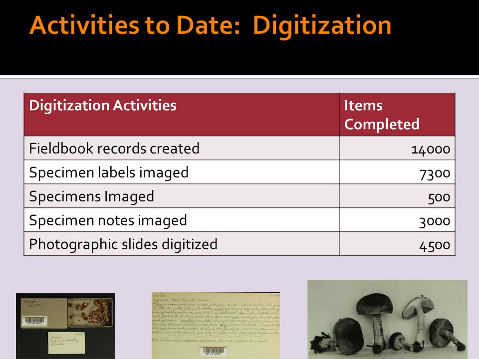 Digitization ActivitiesItems Completed Fieldbook records created14000 Specimen labels imaged7300 Specimens Imaged500 Specimen notes imaged3000 Photographic slides digitized4500