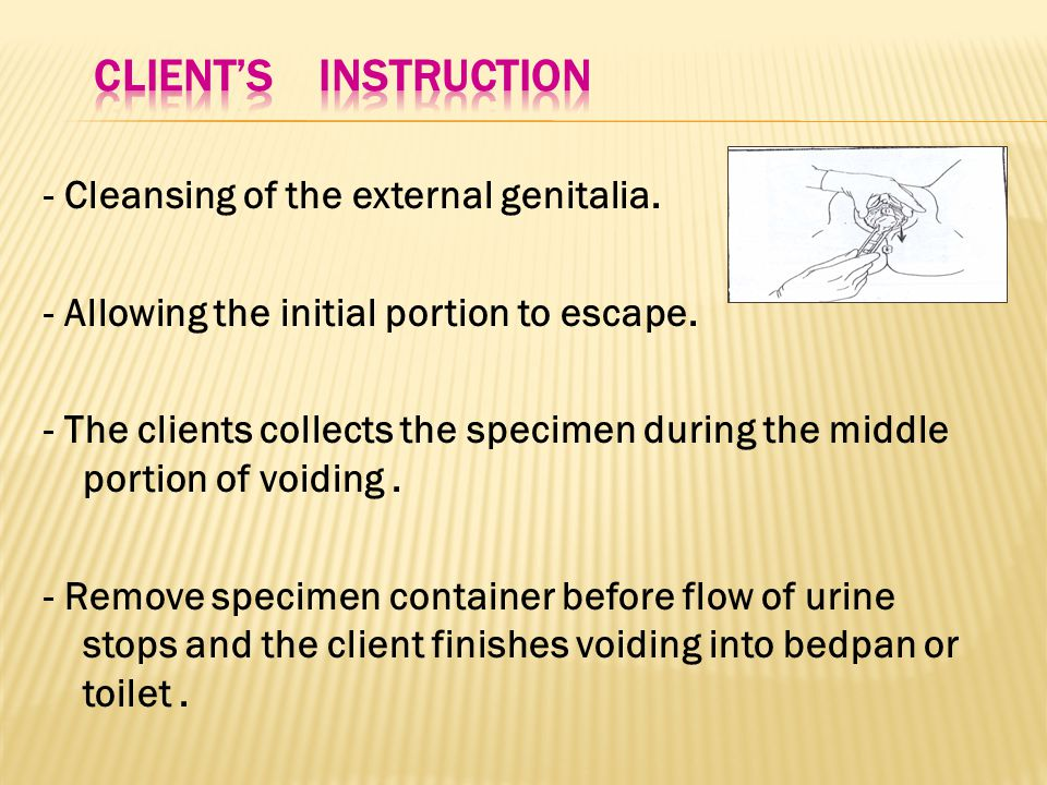- Cleansing of the external genitalia. - Allowing the initial portion to escape.