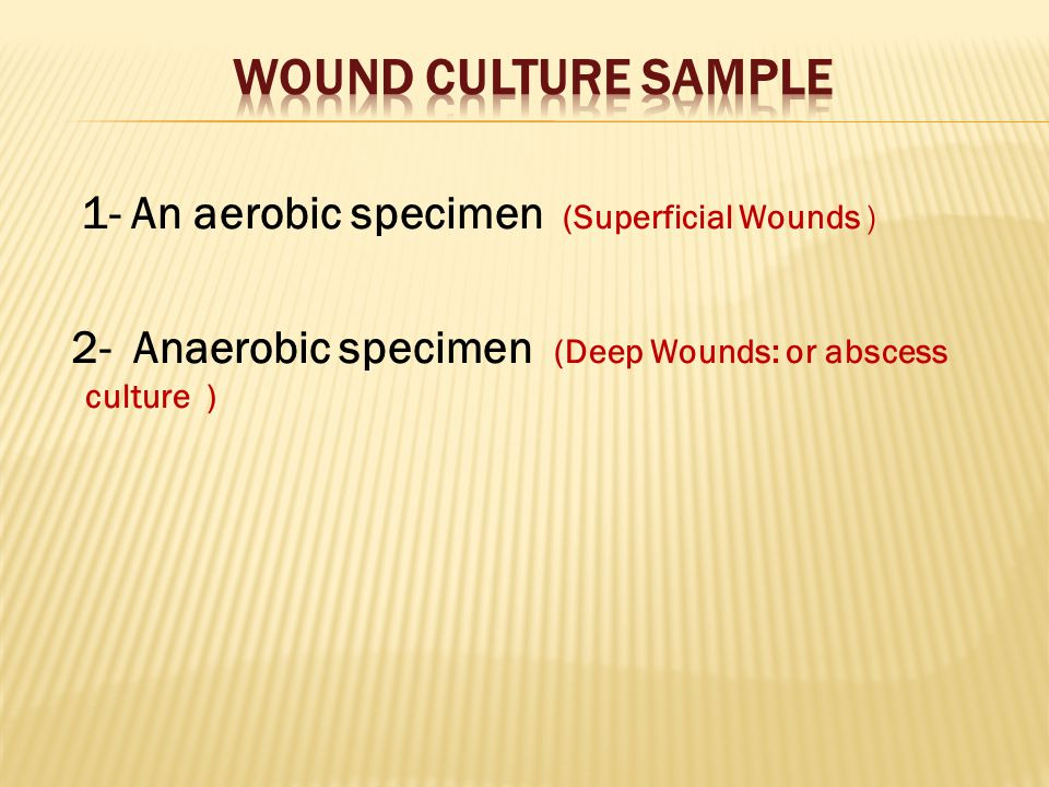 1- An aerobic specimen (Superficial Wounds ) 2- Anaerobic specimen (Deep Wounds: or abscess culture )