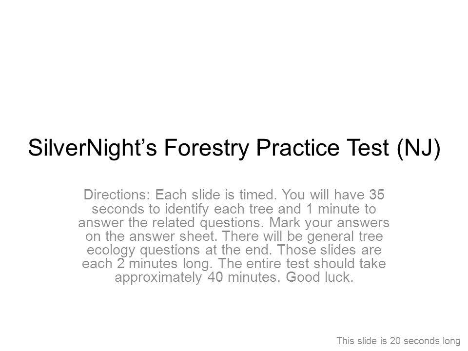 SilverNight's Forestry Practice Test (NJ) Directions: Each slide is timed. You will have 35 seconds to identify each tree and 1 minute to answer the r