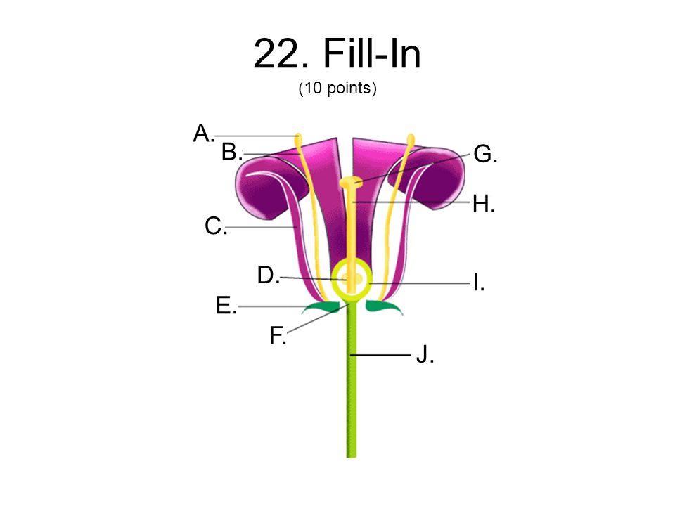 22. Fill-In (10 points) A. B. C. D. J. I. H. G. F. E.