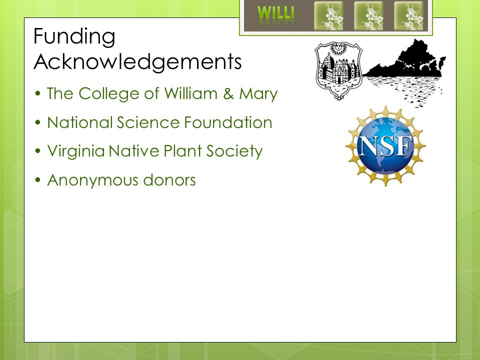 Funding Acknowledgements The College of William & Mary National Science Foundation Virginia Native Plant Society Anonymous donors Phlox nivalis