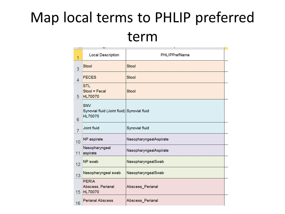 Map local terms to PHLIP preferred term