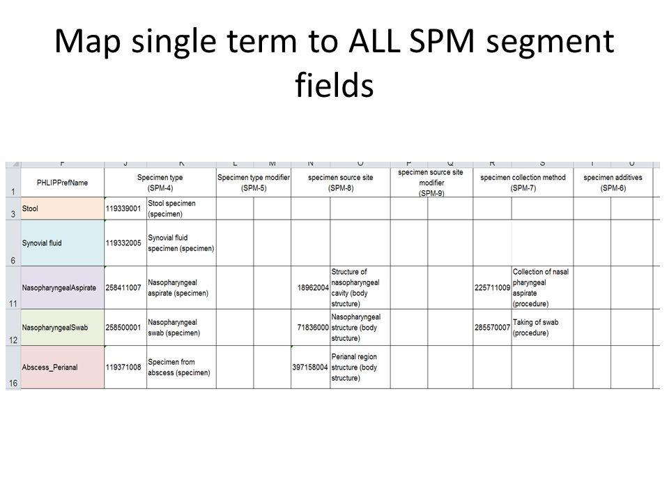 Map single term to ALL SPM segment fields
