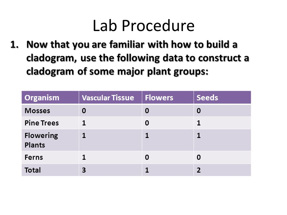 Lab Procedure 2.The groups you just organized in a cladogram, had some differences and similarities.