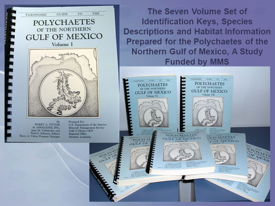 The Seven Volume Set of Identification Keys, Species Descriptions and Habitat Information Prepared for the Polychaetes of the Northern Gulf of Mexico, A Study Funded by MMS