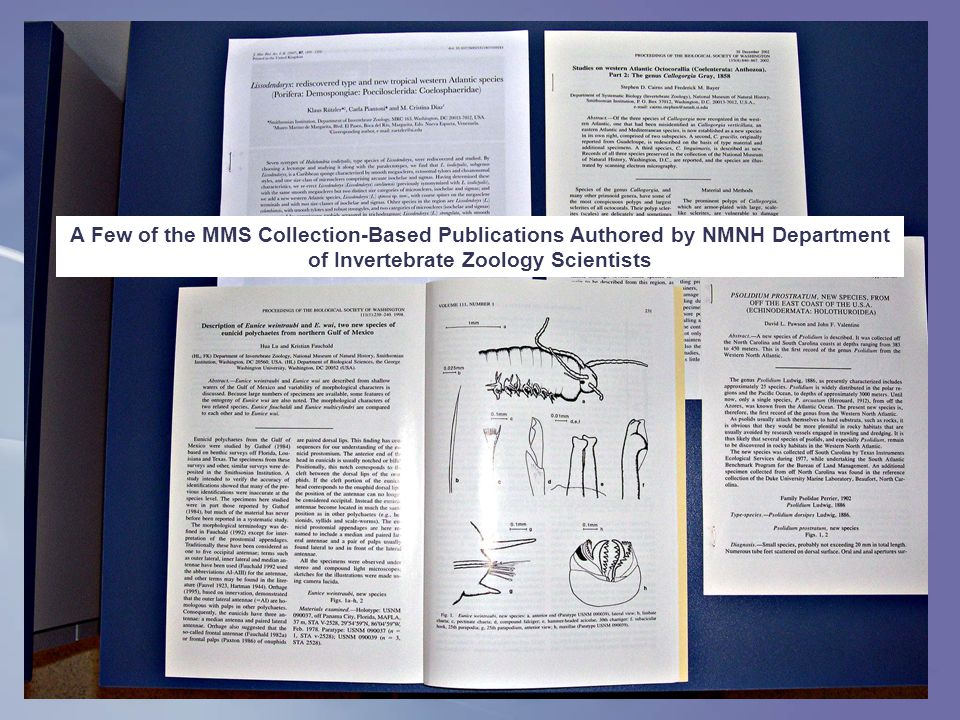 A Few of the MMS Collection-Based Publications Authored by NMNH Department of Invertebrate Zoology Scientists
