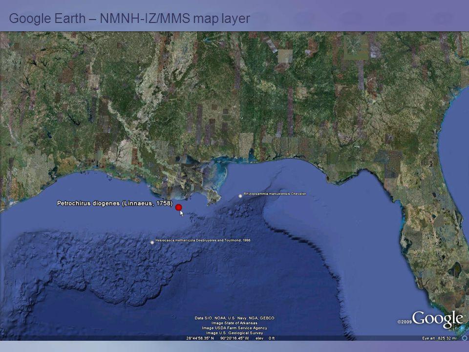 Google Earth – NMNH-IZ/MMS map layer