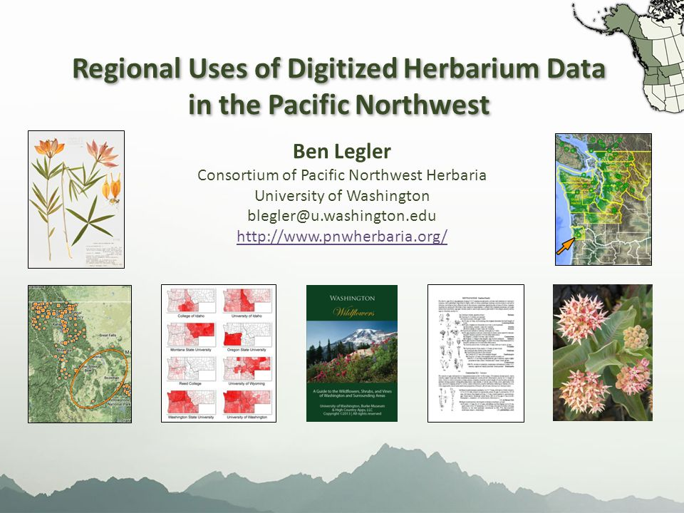 Regional Uses of Digitized Herbarium Data in the Pacific Northwest Regional Uses of Digitized Herbarium Data in the Pacific Northwest Ben Legler Consortium of Pacific Northwest Herbaria University of Washington blegler@u.washington.edu http://www.pnwherbaria.org/