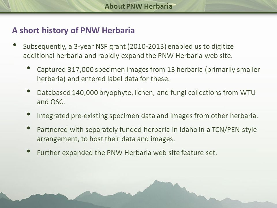 About PNW Herbaria PNW Herbaria now hosts 2.1 million specimen records and provides access to 595,000 specimen images.