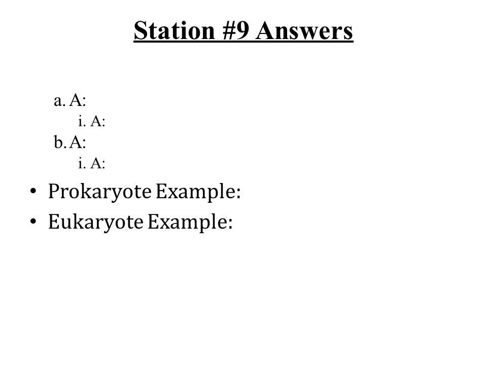 Station #9 Answers a.A: i.A: b.A: i.A: Prokaryote Example: Eukaryote Example: