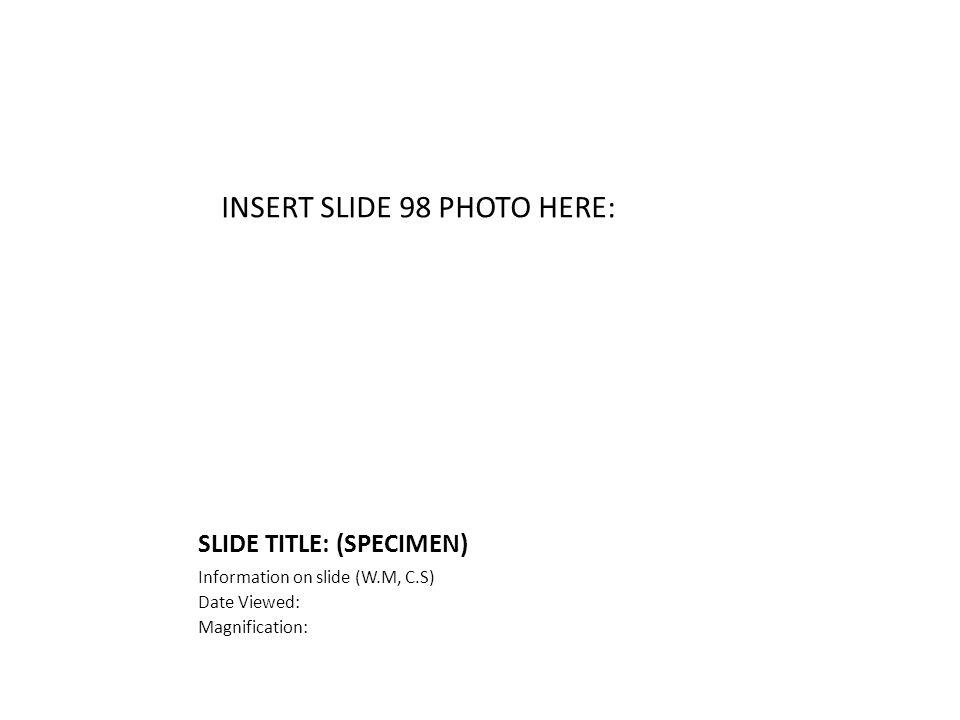 SLIDE TITLE: (SPECIMEN) Information on slide (W.M, C.S) Date Viewed: Magnification: INSERT SLIDE 98 PHOTO HERE: