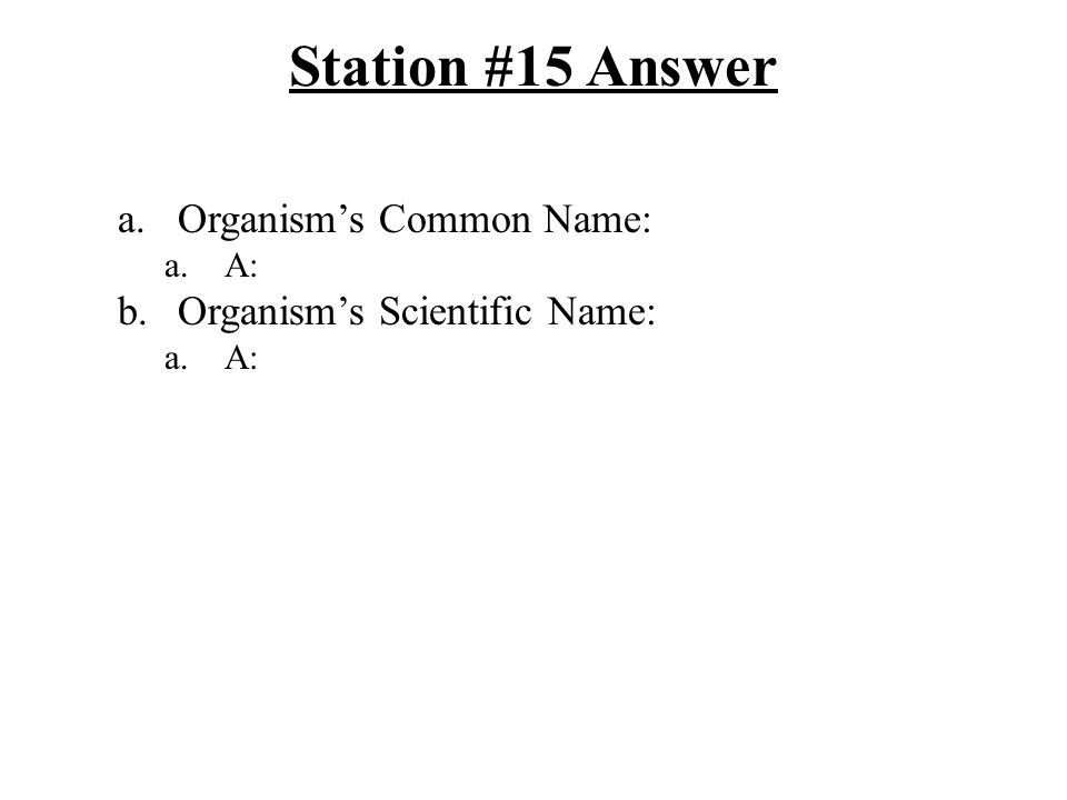 Station #15 Answer a.Organism's Common Name: a.A: b.Organism's Scientific Name: a.A: