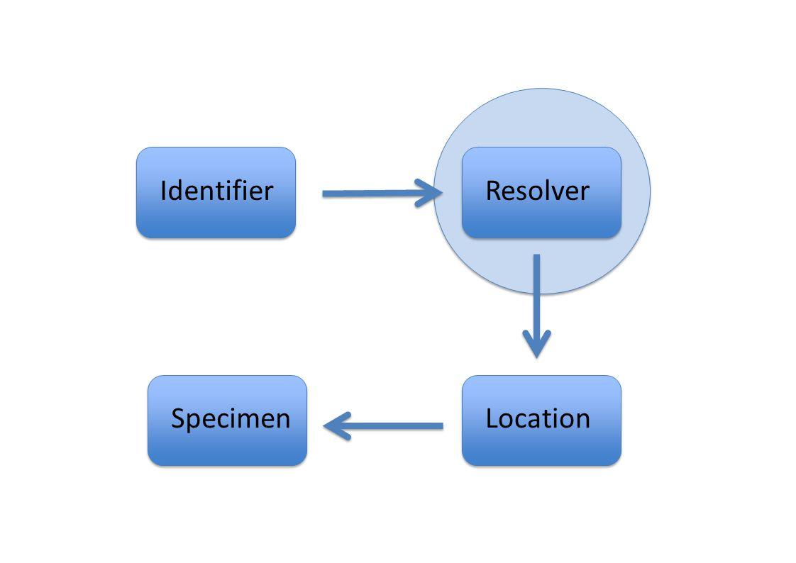 IdentifierResolver LocationSpecimen